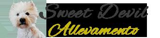WestieSweetDevil.it – Allevamento West Highland Terrier